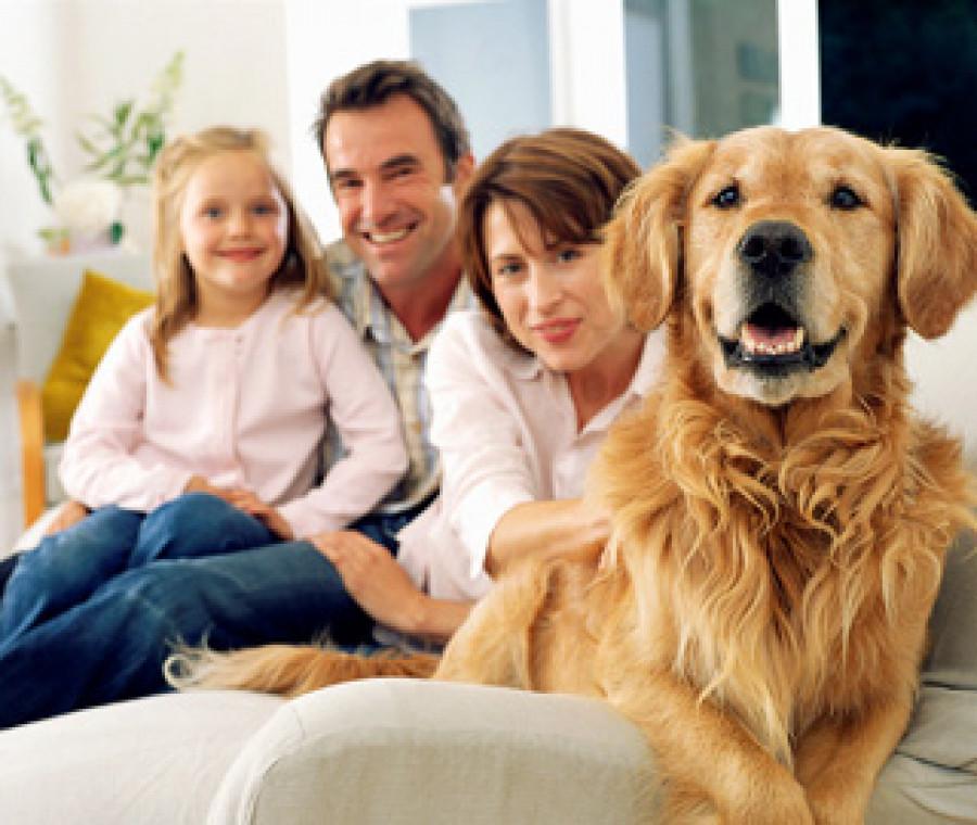 famiglia-con-cane.jpeg