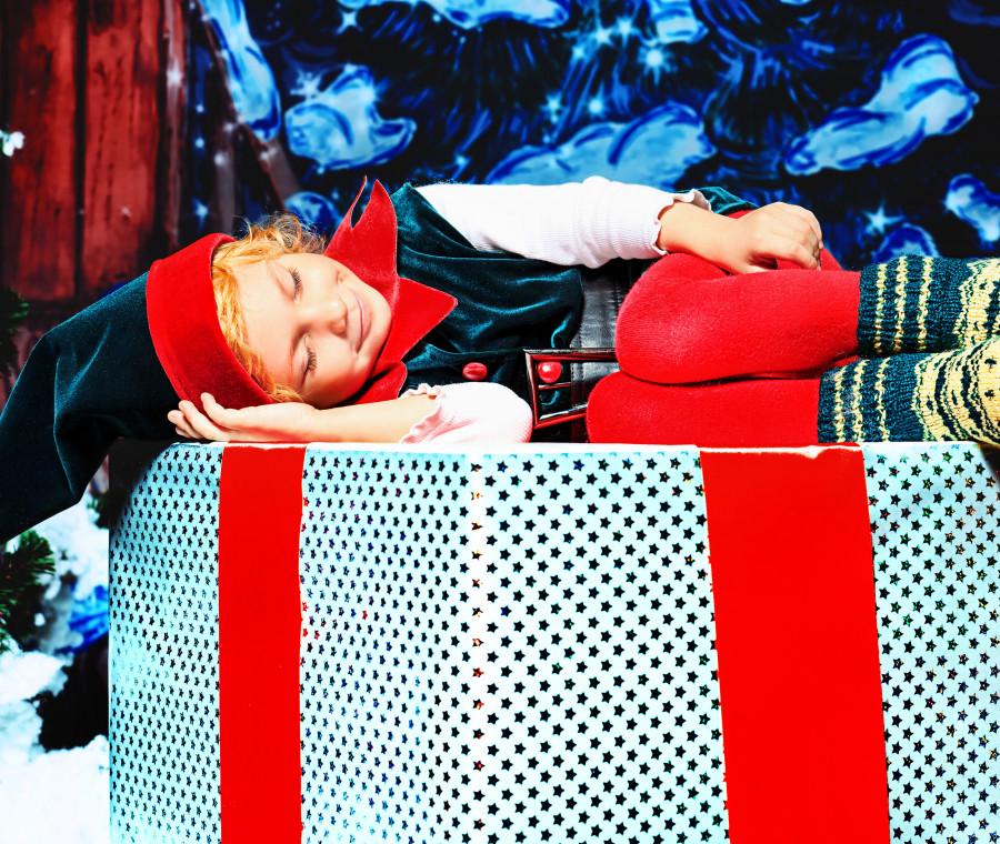 gli-elfi-gentili-nuovi-amici-da-mettere-sotto-l-albero