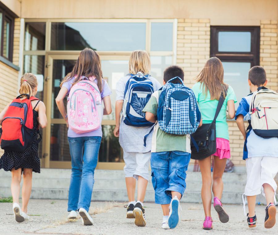 i-punti-essenziali-del-progetto-buona-scuola