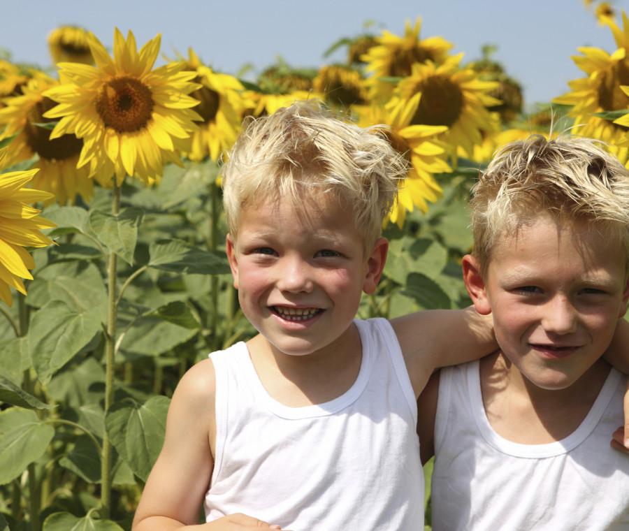 fratelli-gemelli