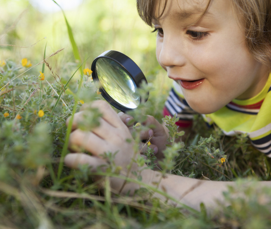 come-far-crescere-la-curiosita-nei-bambini