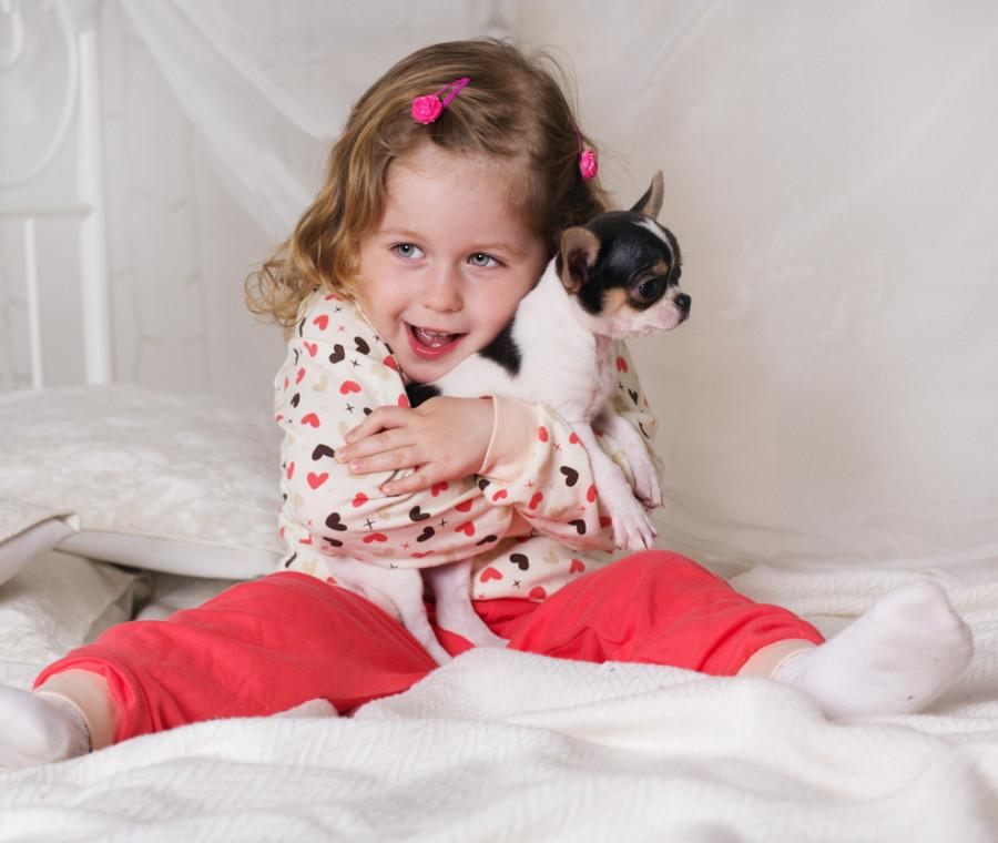come-scegliere-un-cane-per-i-bambini-i-consigli-dell-esperta