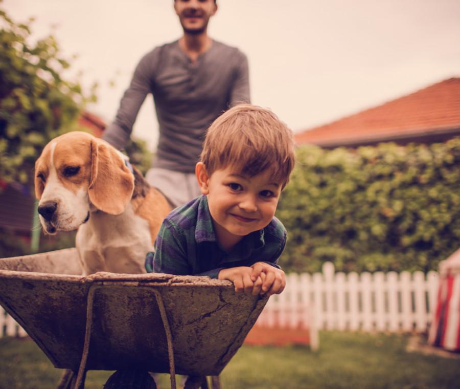 giochi-da-fare-con-cani-e-bambini-regole-e-consigli