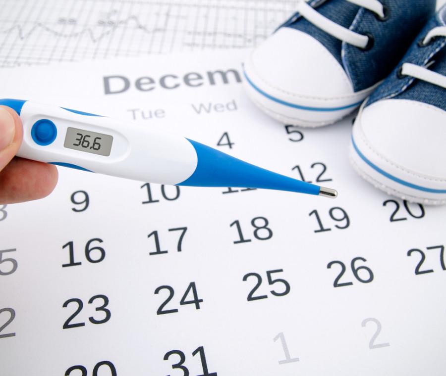calcolo-del-periodo-fertile-per-rimanere-incinta