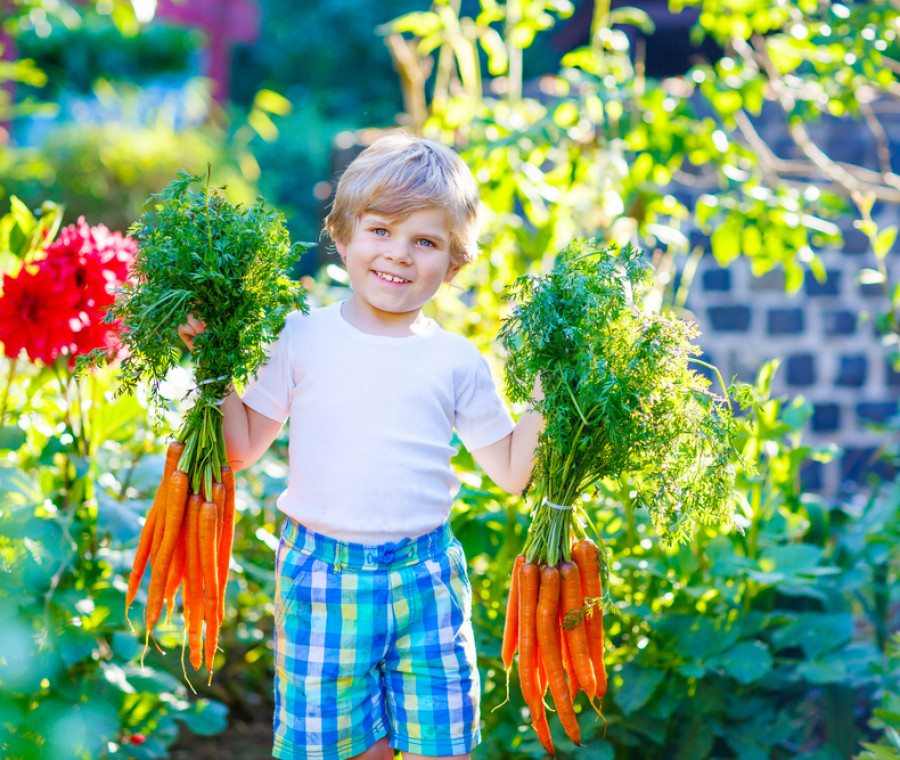 vacanze-in-fattoria-per-bambini-consigli-e-proposte