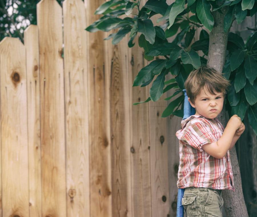 vostro-figlio-vi-dice-spesso-no-sta-imparando