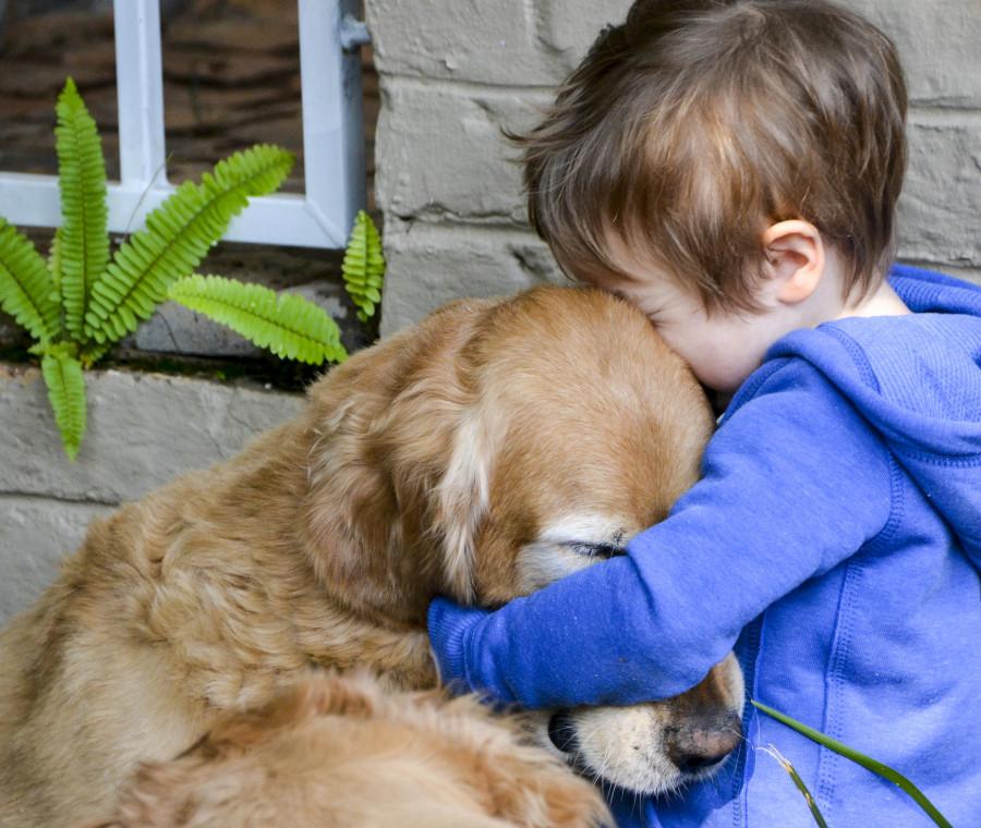 come-preparare-i-figli-alla-morte-di-un-cane