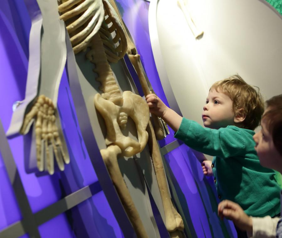 18-maggio-giornata-internazionale-dei-musei-perche-portare-i-bimbi-al-museo