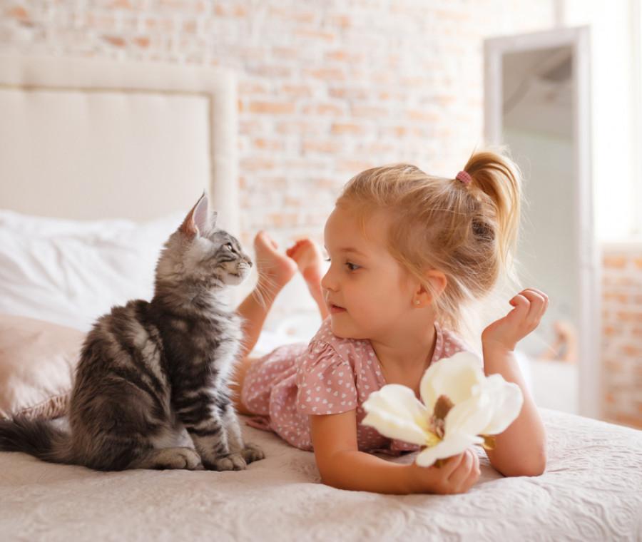 gatti-e-bambini-i-benefici-per-la-salute-e-lo-sviluppo