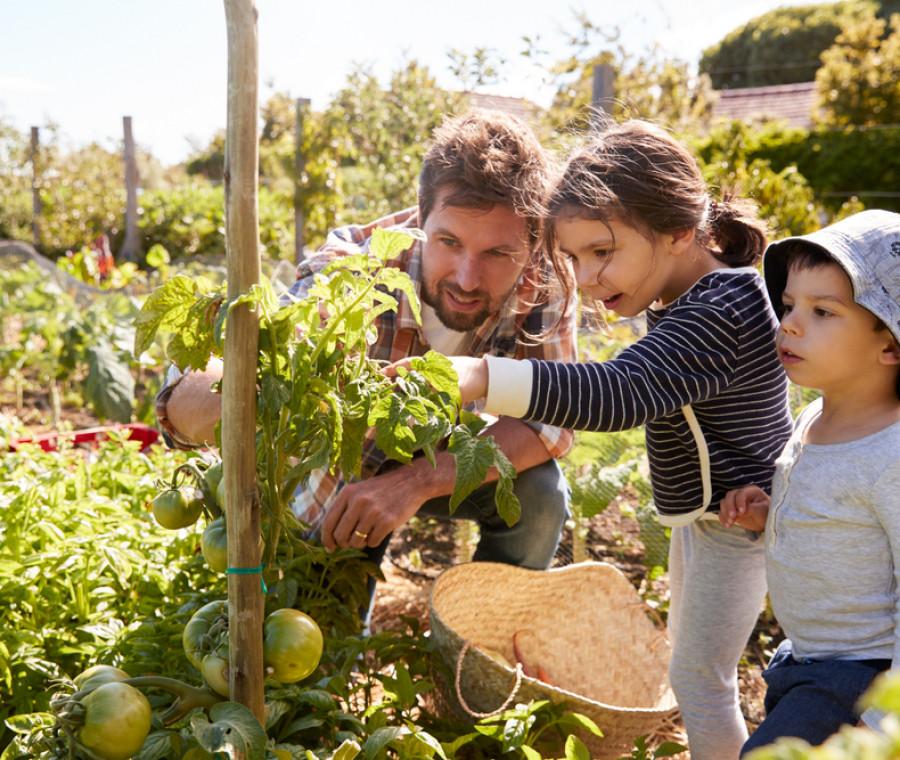 come-fare-giardinaggio-con-i-bambini-idee-progetti-e-oggetti-utili