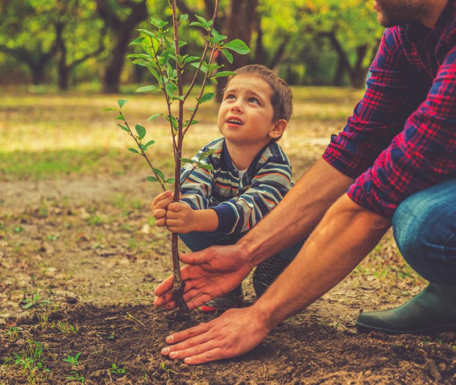 educare-i-bambini-al-rispetto-per-l-ambiente