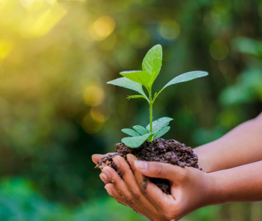 giornata-mondiale-dell-ambiente-lavoretti