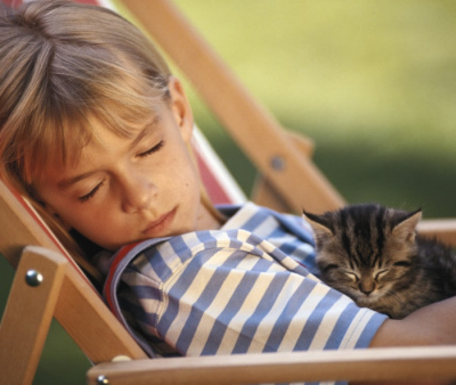 bambino-dorme-gattino