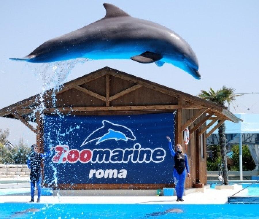 zoomarine_roma