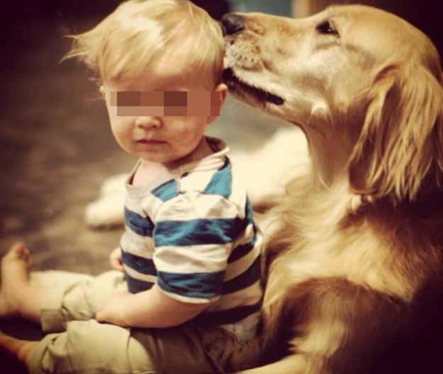 il-cane-che-coccola-un-bambino